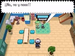 Guía Pokémon Blanco / Negro 015