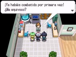 Guía Pokémon Blanco / Negro 017