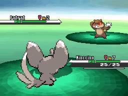 Guía Pokémon Blanco / Negro 022