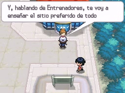 Guía Pokémon Blanco / Negro 027
