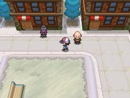 Guía Pokémon Blanco / Negro 031