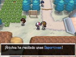 Guía Pokémon Blanco / Negro 034