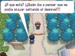 Guía Pokémon Blanco / Negro 036