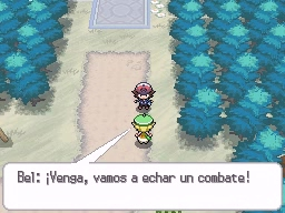 Guía Pokémon Blanco / Negro 039