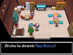 Guía Pokémon Blanco / Negro 082