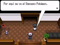 Guía Pokémon Blanco / Negro 084