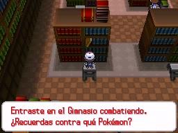 Guía Pokémon Blanco / Negro 086