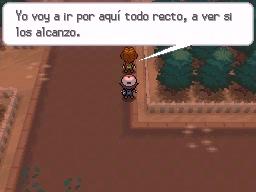 Guía Pokémon Blanco / Negro 107