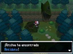 Guía Pokémon Blanco / Negro 112