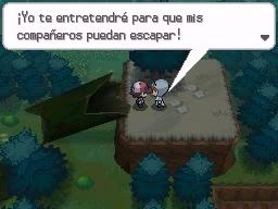 Guía Pokémon Blanco / Negro 114