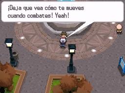Guía Pokémon Blanco / Negro 135