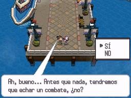 Guía Pokémon Blanco / Negro 142