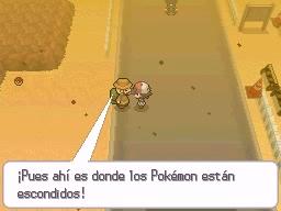 Guía Pokémon Blanco / Negro 165