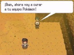 Guía Pokémon Blanco / Negro 181