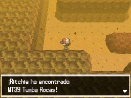Guía Pokémon Blanco / Negro 183