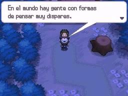 Guía Pokémon Blanco / Negro 215