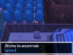 Guía Pokémon Blanco / Negro 219