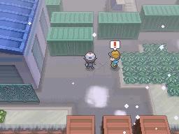 Guía Pokémon Blanco / Negro 250