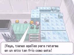 Guía Pokémon Blanco / Negro 256