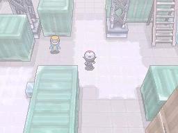 Guía Pokémon Blanco / Negro 259