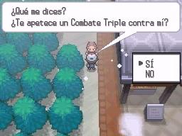 Guía Pokémon Blanco / Negro 269