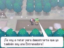 Guía Pokémon Blanco / Negro 285
