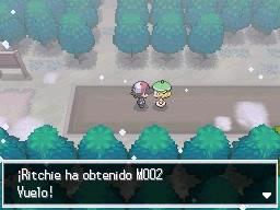Guía Pokémon Blanco / Negro 286