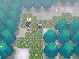 Guía Pokémon Blanco / Negro 288