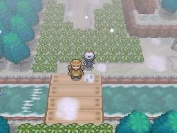 Guía Pokémon Blanco / Negro 293