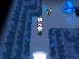 Guía Pokémon Blanco / Negro 295