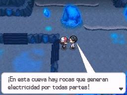 Guía Pokémon Blanco / Negro 300