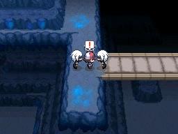 Guía Pokémon Blanco / Negro 303