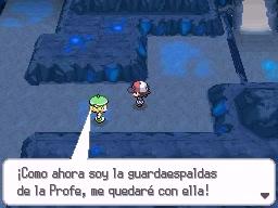 Guía Pokémon Blanco / Negro 312