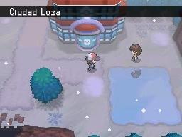 Guía Pokémon Blanco / Negro 313