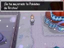 Guía Pokémon Blanco / Negro 315