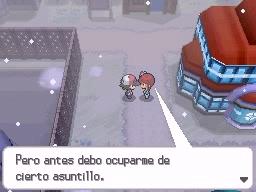 Guía Pokémon Blanco / Negro 316