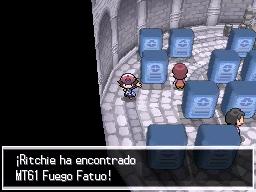Guía Pokémon Blanco / Negro 330
