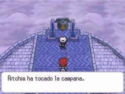 Guía Pokémon Blanco / Negro 338