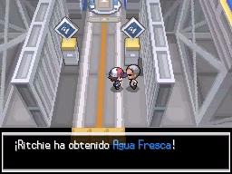 Guía Pokémon Blanco / Negro 341