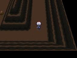 Guía Pokémon Blanco / Negro 368