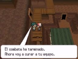 Guía Pokémon Blanco / Negro 375
