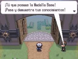 Guía Pokémon Blanco / Negro 518