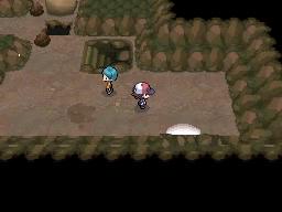 Guía Pokémon Blanco / Negro 541