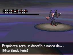Guía Pokémon Blanco / Negro 558
