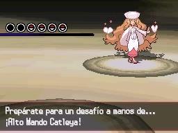 Guía Pokémon Blanco / Negro 566