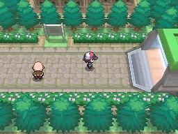Guía Pokémon Blanco / Negro - Página 2 691
