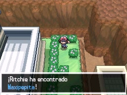 Guía Pokémon Blanco / Negro - Página 2 743