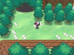 Guía Pokémon Blanco / Negro - Página 2 755