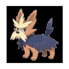¡¡Club Pokémon!! 507